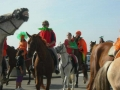 fete-chevaux_0-preview